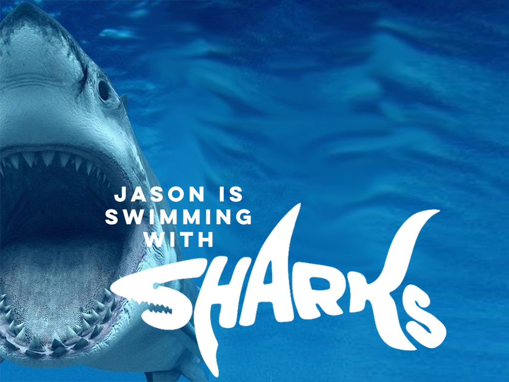 Jason is swimming with Sharks!